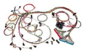 1998-2004 GM LS1/LS6 EFI Harness